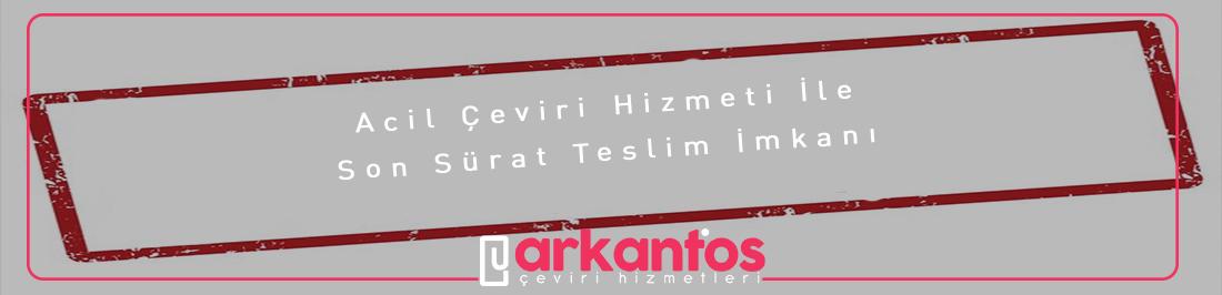 Acil İngilizce Çeviri İzmir
