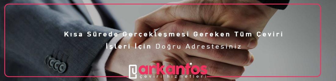 fransızca-ingilizce çeviri İzmir