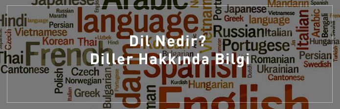 Dil-Nedir-Diller-Hakkında-Bilgi